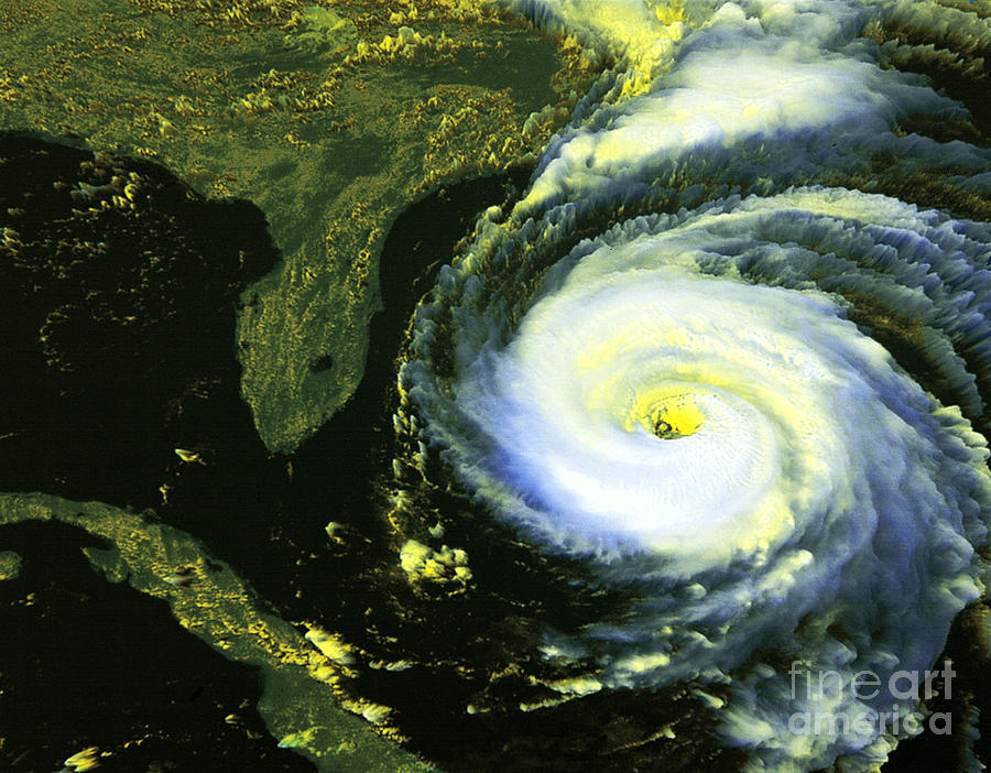 Satellite Image Photograph - Goes 8 Satellite Image Of Hurricane Fran by Science Source