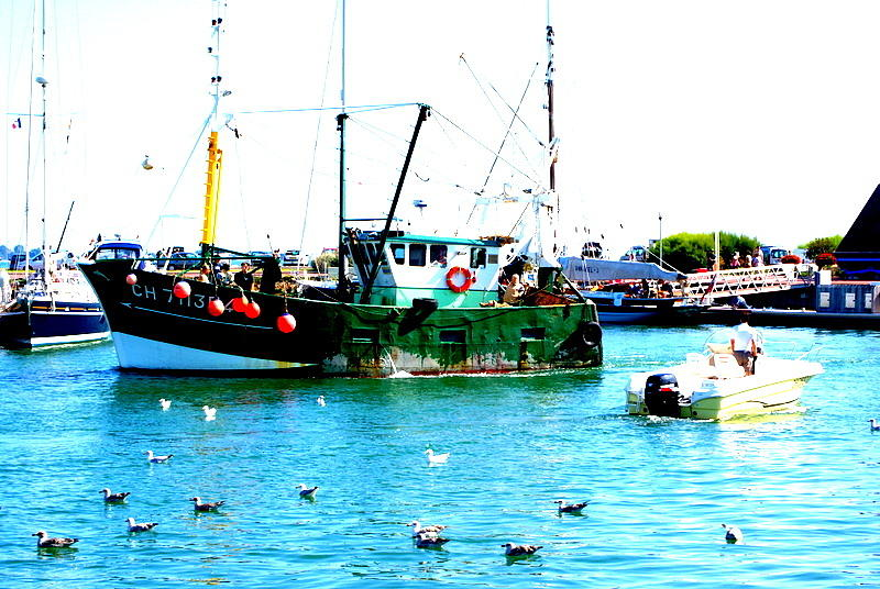 Boat Photograph - Going Fishing by Amanda Pillet