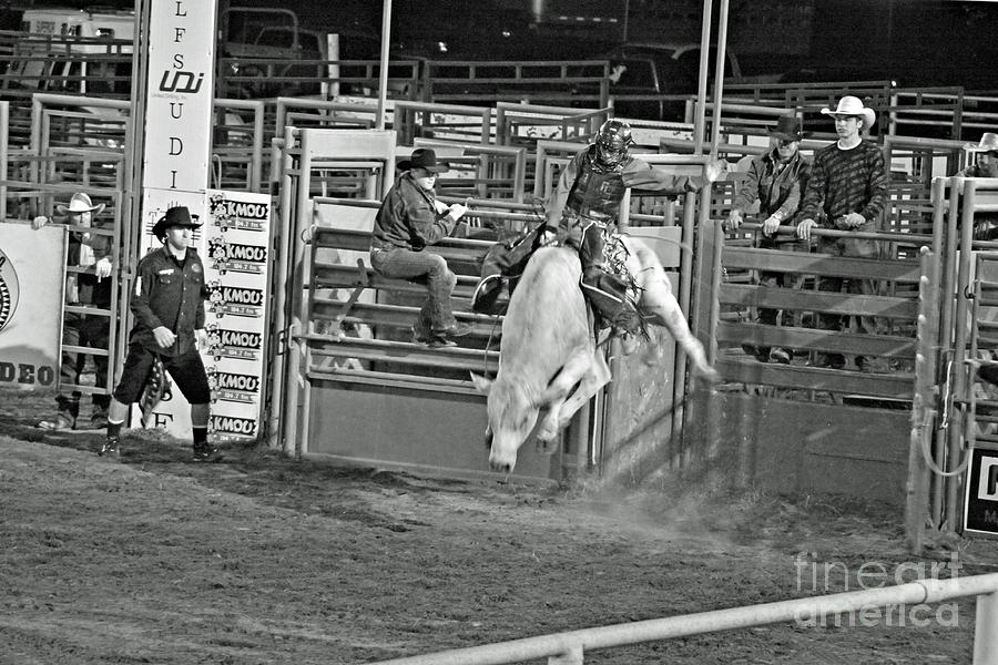 Bull Riding Photograph - Going For 8 by Shawn Naranjo