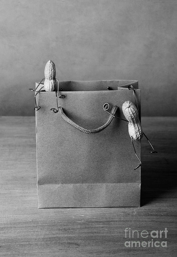 Peanut Photograph - Going Shopping 01 by Nailia Schwarz