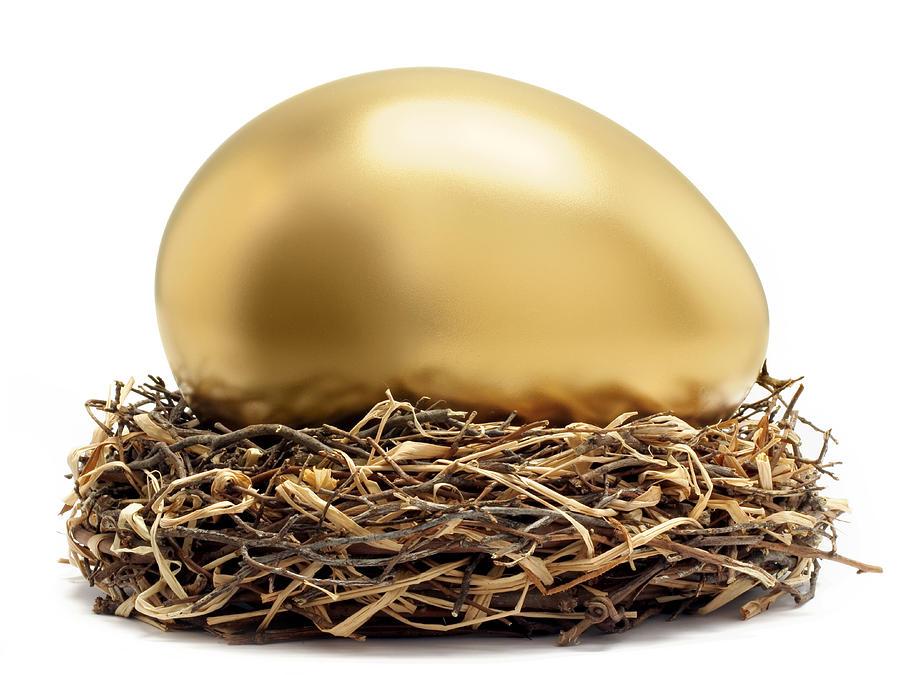 Gold Egg In Nest Photograph by John Kuczala