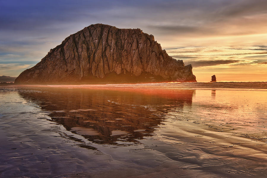 Morro Bay Photograph - Golden by Beth Sargent