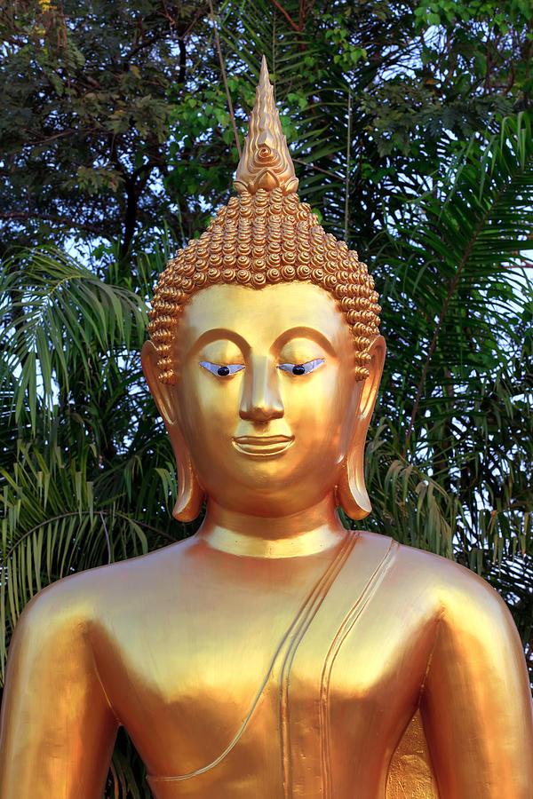 Thailand Photograph - Golden Buddha Statue by Thomas  von Aesch