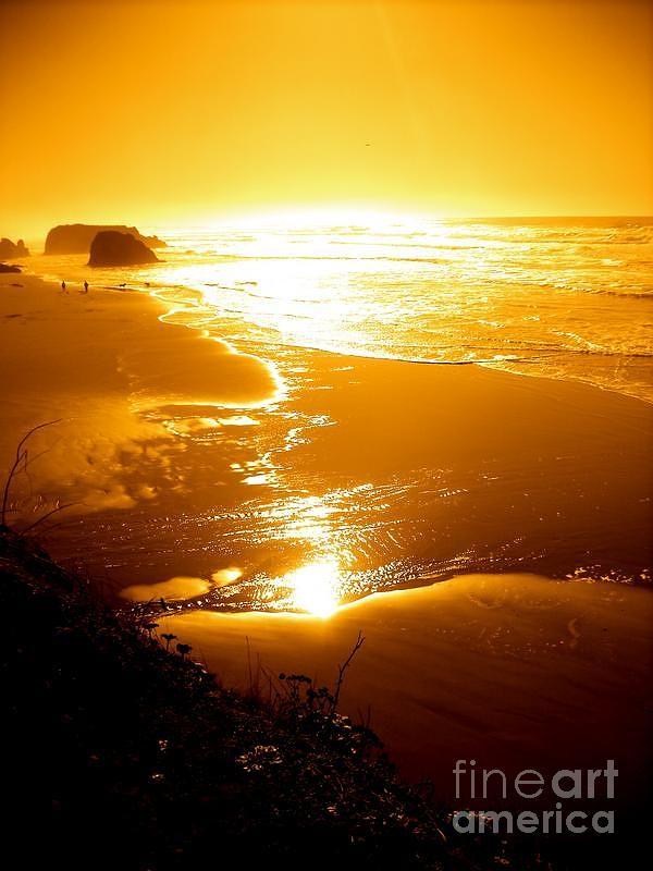 Coast Line Photograph - Golden Coast by Jeremiah Hutchison