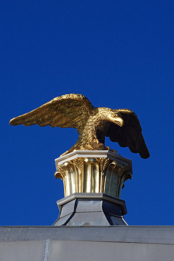 City Scenes Photograph - Golden Eagle by Lisa Phillips