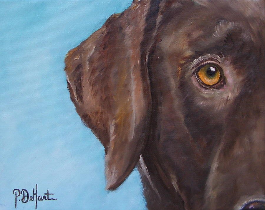 Golden Eye Painting By Patricia Dehart
