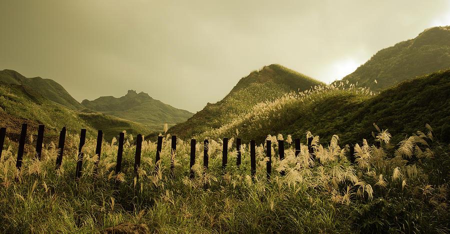 Horizontal Photograph - Golden Hills by Tnwy