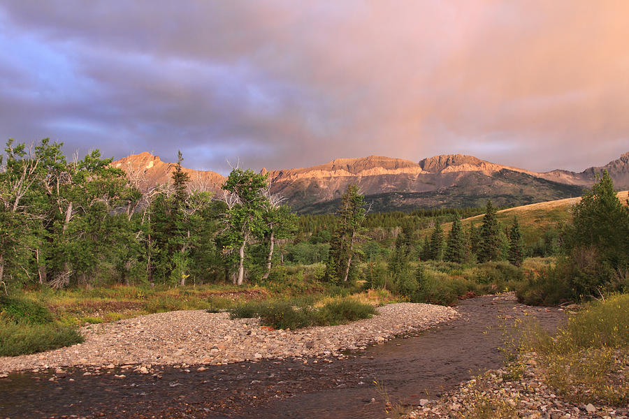 Montana Photograph - Golden Montana Mountain by Shari Jardina