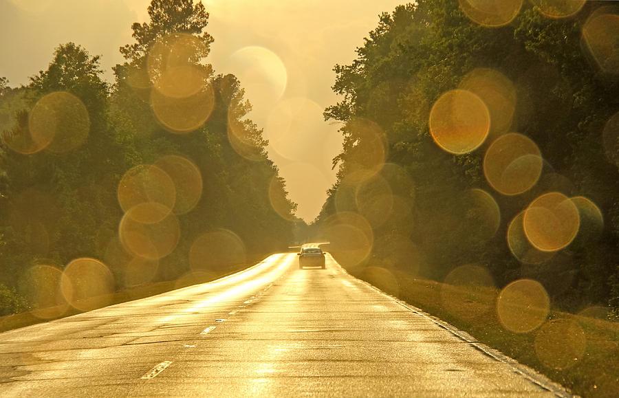 Horizontal Photograph - Golden Road by Daniela Duncan
