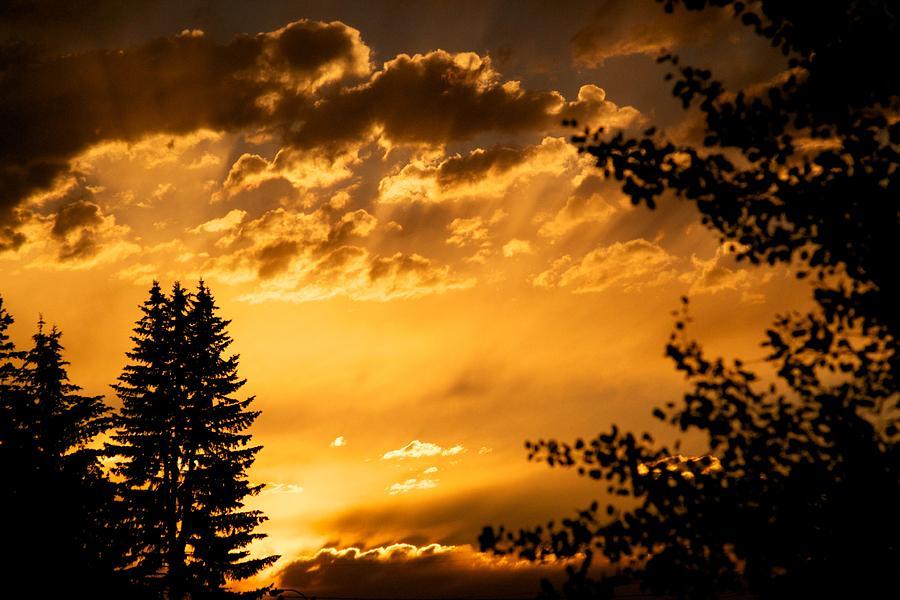 Sunset Photograph - Golden Sky 2 by Kevin Bone