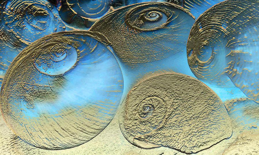 Spirals Photograph - Golden Spirals by Barbara  White