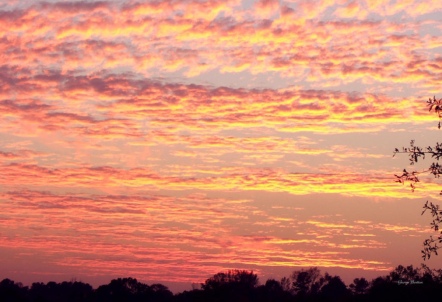 Clouds Photograph - Golden Sunset 002 by George Bostian