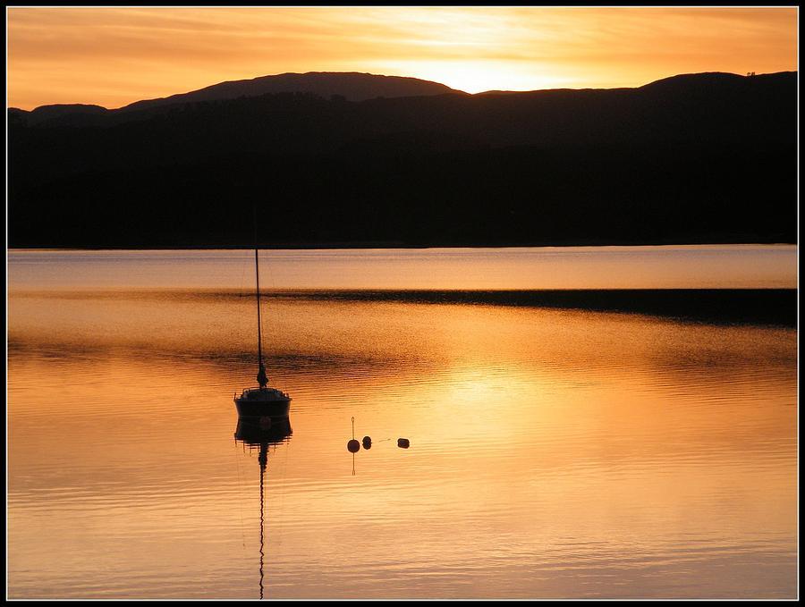 Gold Photograph - Golden Sunset by Ronnie Reffin