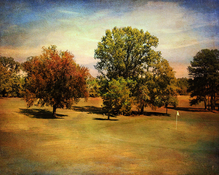 Golf Photograph - Golf Course II by Jai Johnson