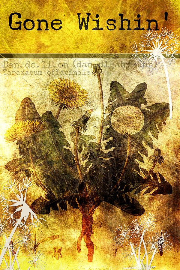 Mixed Media Digital Art - Gone Wishin by Bonnie Bruno