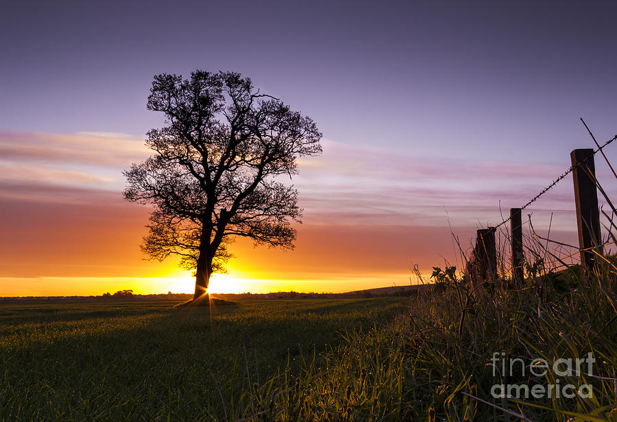Landscape Photograph - Good Morrow by Tom Migot
