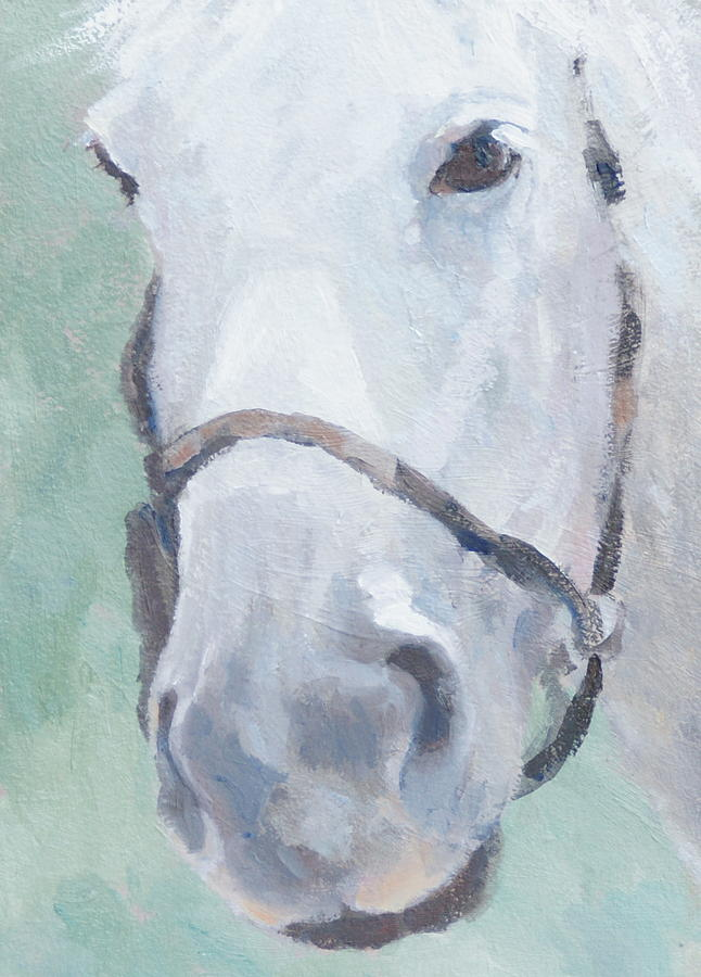 Horse Painting - Grace by Sandra Harris