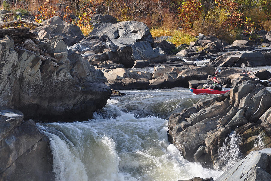 Landscape Photograph - Grace Under Pressure On The Potomac River At Great Falls Park by Victoria Porter