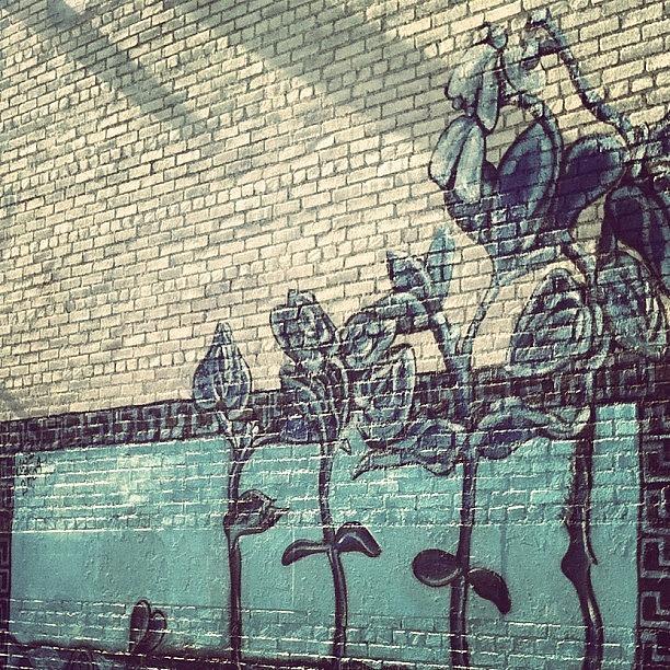 Brick Wall Art graffiti #art #artwork #brick #wall photographjenna luehrsen
