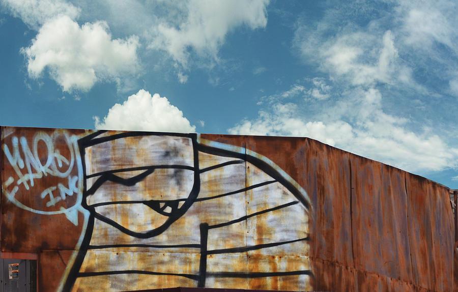 Graffiti Photograph - Graffiti Monster by Nikki Marie Smith