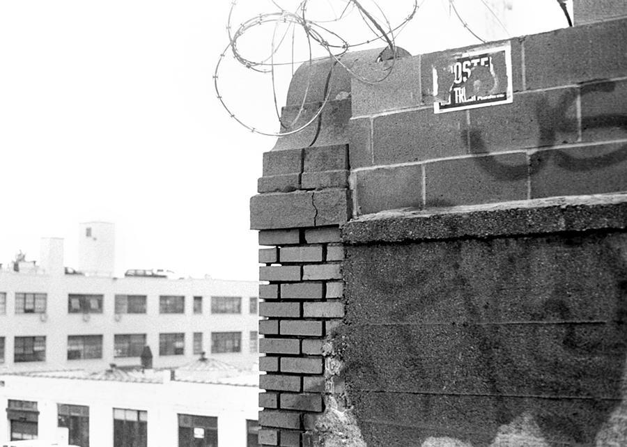 Black Photograph - Graffiti Wall  by Ashlee Meyer