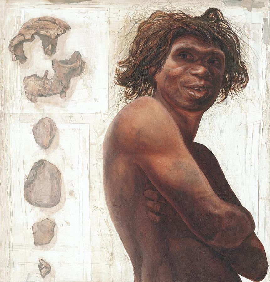 Homo Antecessor Photograph - Gran Dolina Boy Reconstruction by Kennis And Kennismsf