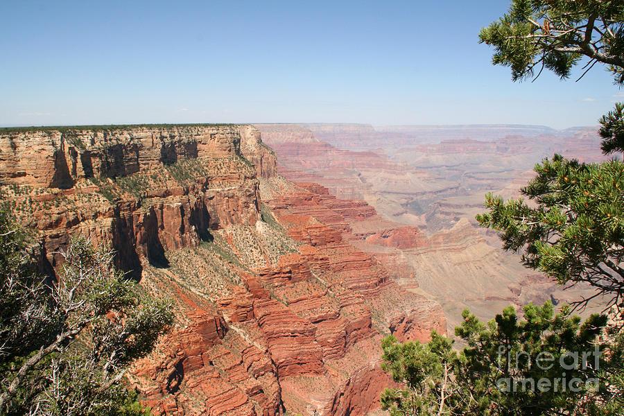 Adventure Photograph - Grand Canyon National Park Usa Arizona by Audrey Campion