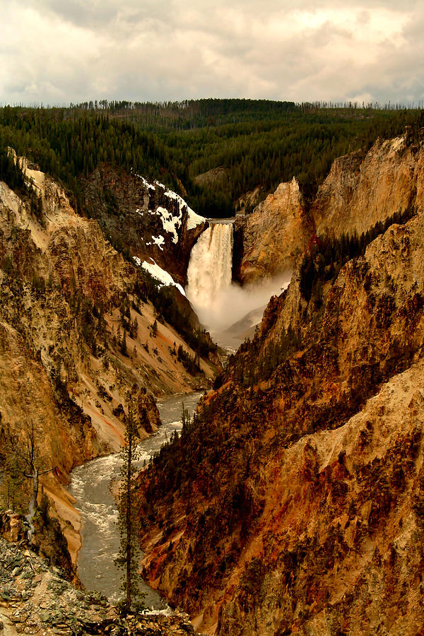 Canyon Photograph - Grand Canyon Of The Yellowstone by Ellen Heaverlo
