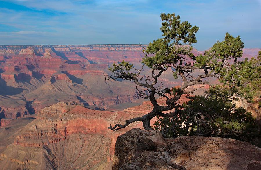 Landscape Photograph - Grand Canyon by Olga Vlasenko