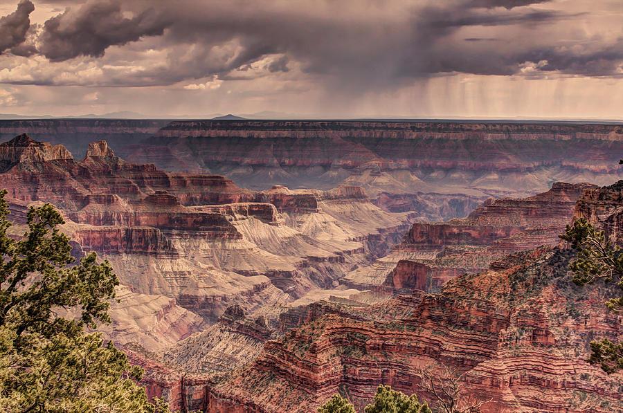 Travel Photograph - Grand Canyon by Tracy Lynn Hart
