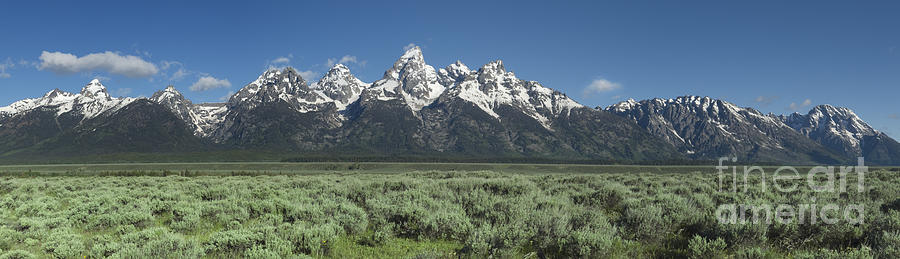 Bronstein Photograph - Grand Teton Spring by Sandra Bronstein