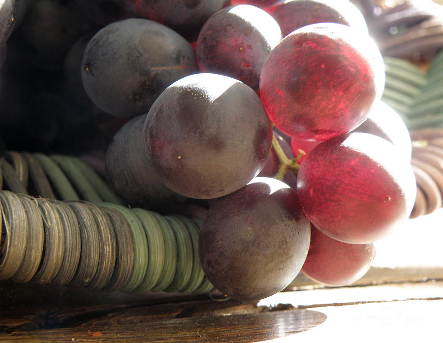 Grapes Photograph - Grape Glow by Lainie Wrightson