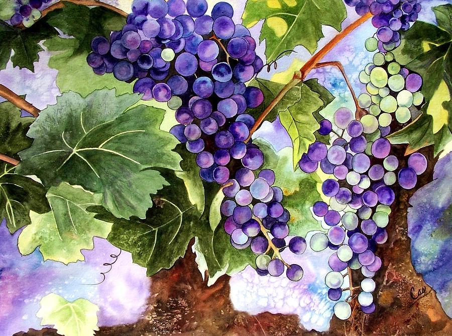 Grapes Painting - Grape Vines by Karen Casciani