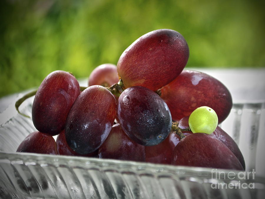 Grape Photograph - Grapes by Gwyn Newcombe