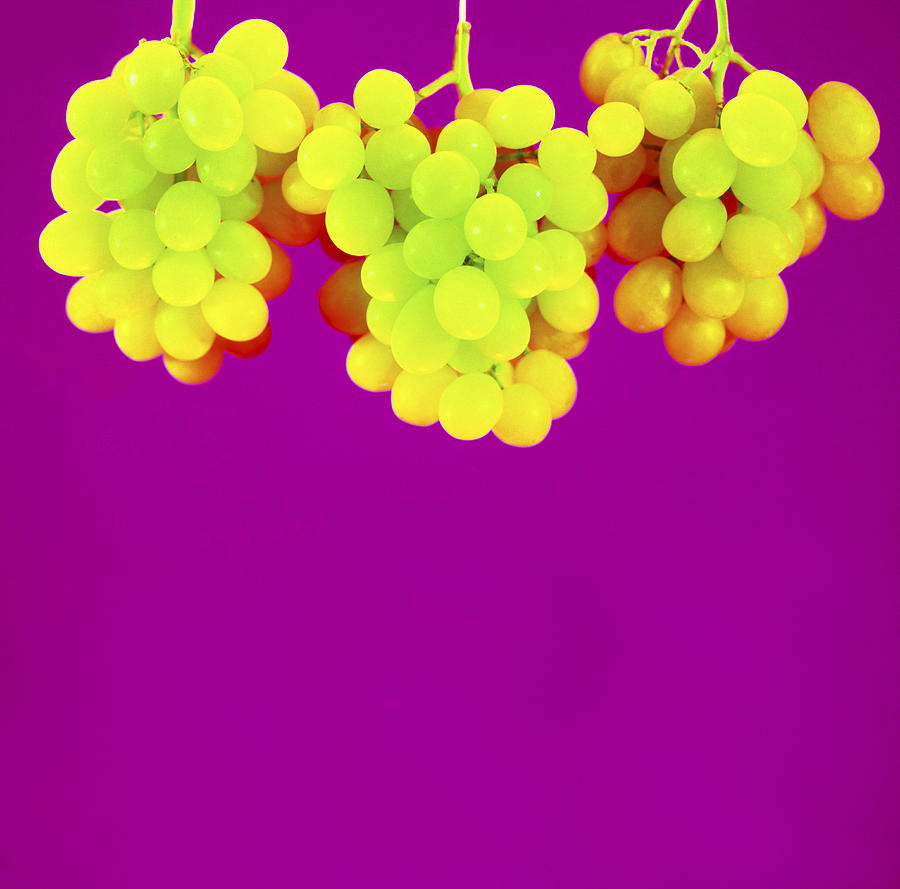 Grape Photograph - Grapes by Johnny Greig