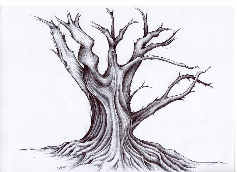 старинное дерево рисунок всегда актуален это