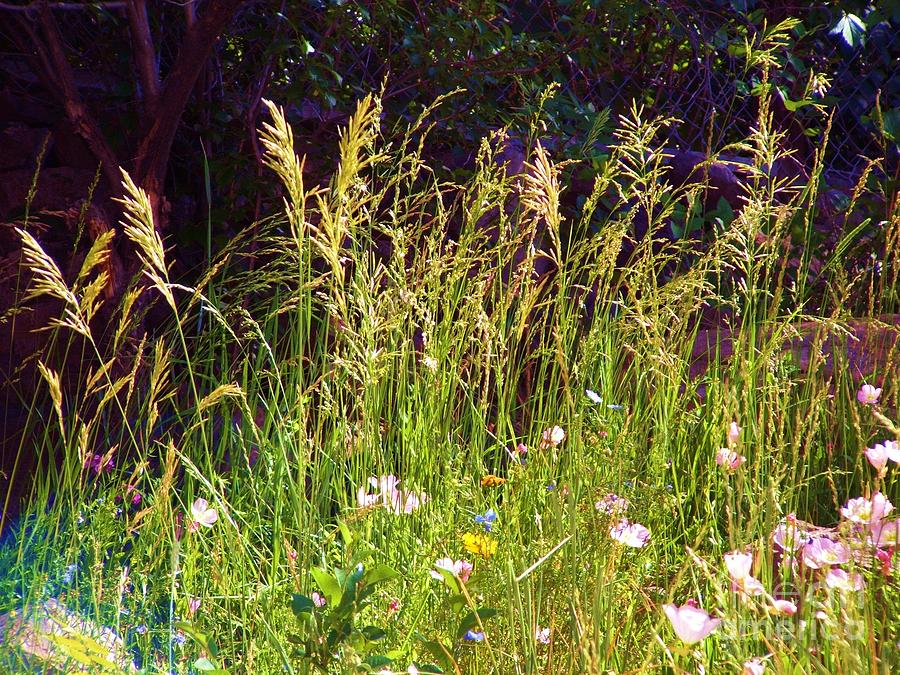 Calming Digital Art - Grass and Pastel Flowers by Annie Gibbons