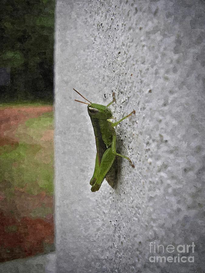 Angles Painting - Grasshopper by Rakratchada Torsap