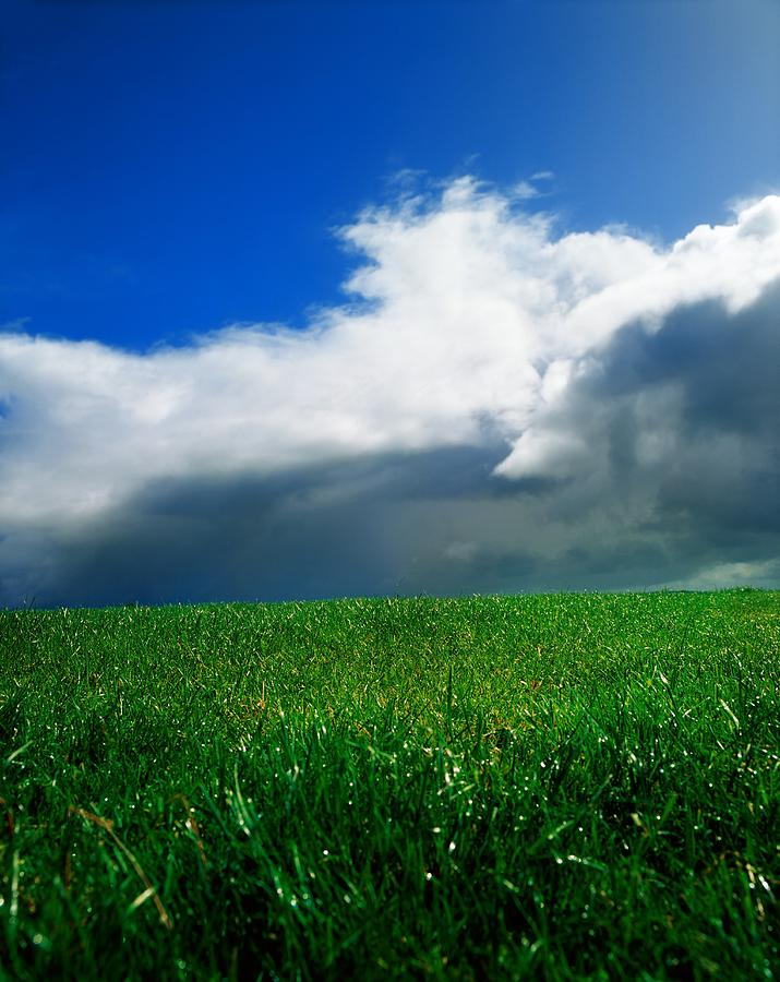 Blue Sky Photograph - Grassy Field, Ireland by The Irish Image Collection