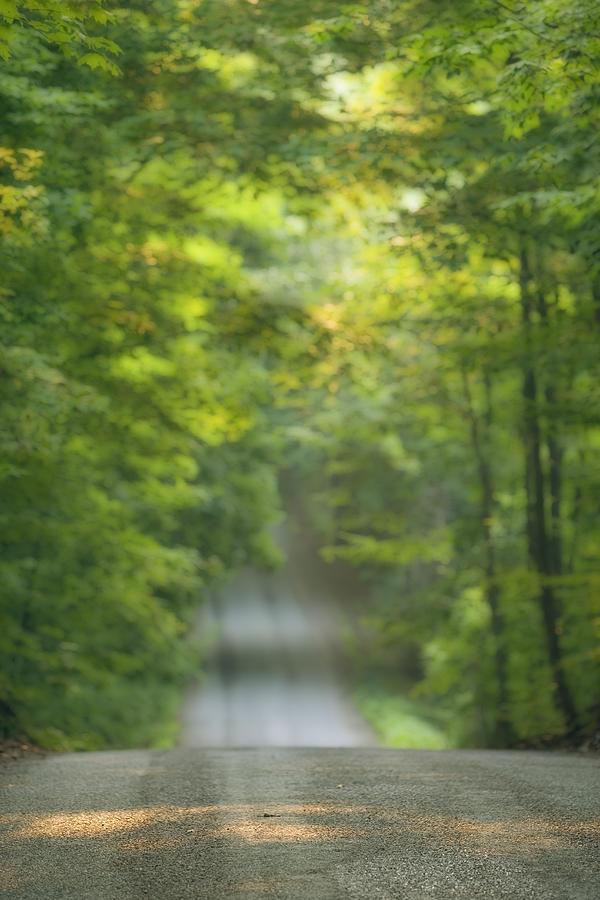 Light Photograph - Gravel Road, Niagara Region, Pelham by Darwin Wiggett