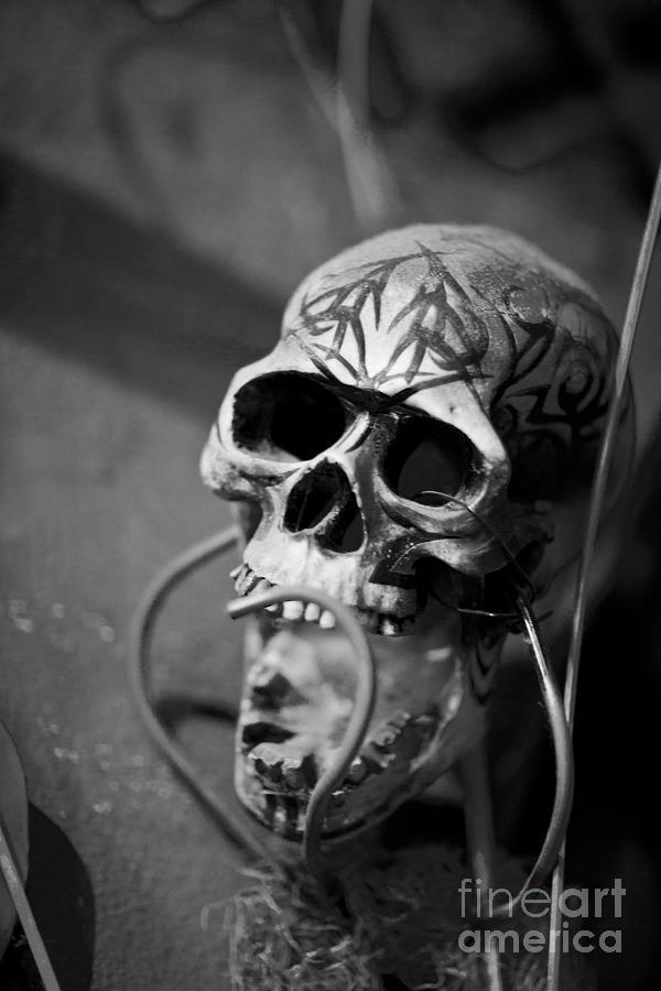New Orleans Photograph - Graveyard  by Leslie Leda