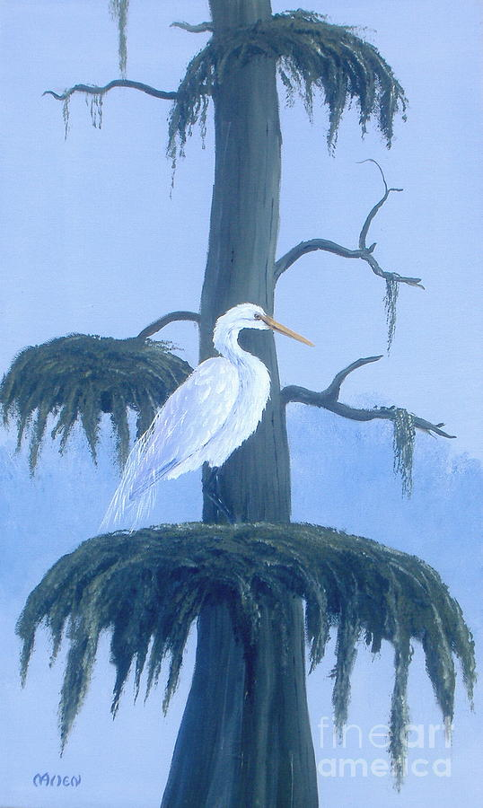 Great Egret Purched by Michael Allen