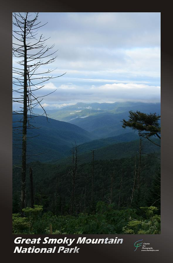 Great Photograph - Great Smoky Mountains Np 009 by Charles Fox