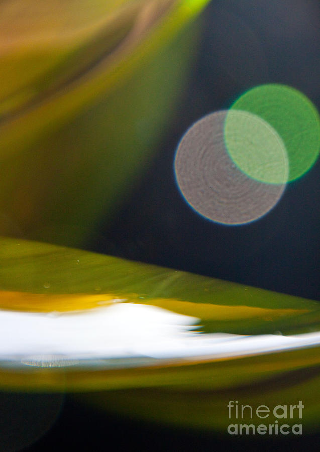 Abstract Photograph - Green And Gold Abstract by Dana Kern