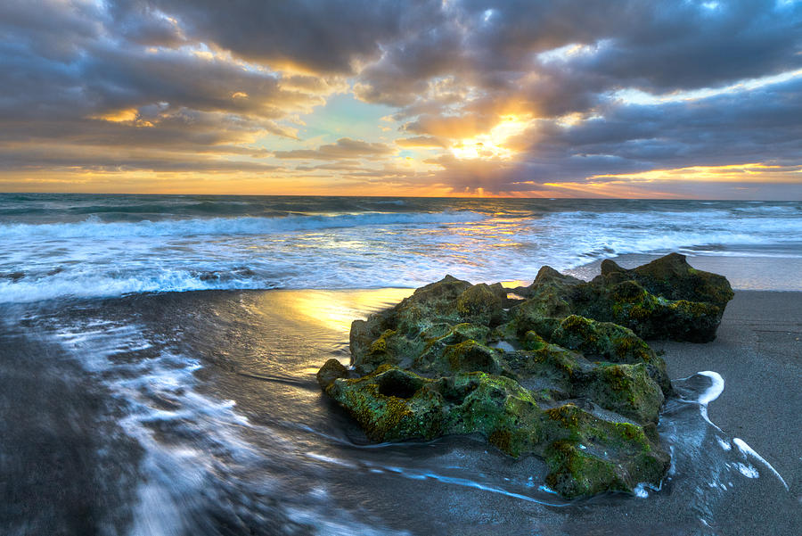 Blowing Rocks Photograph - Green And Gold by Debra and Dave Vanderlaan