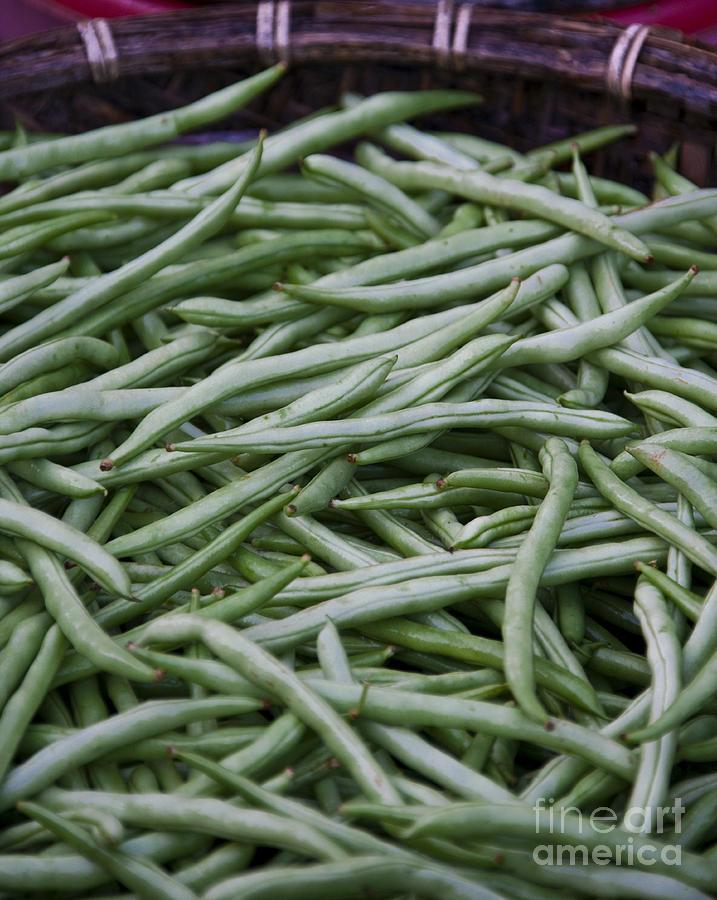 Abundance Photograph - Green Beans by David Buffington