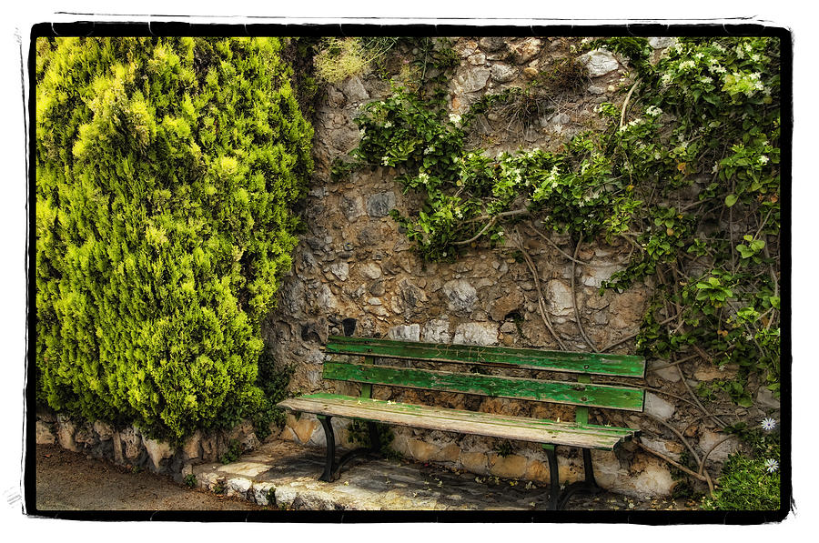 Framed Pyrography - Green Bench by Mauro Celotti