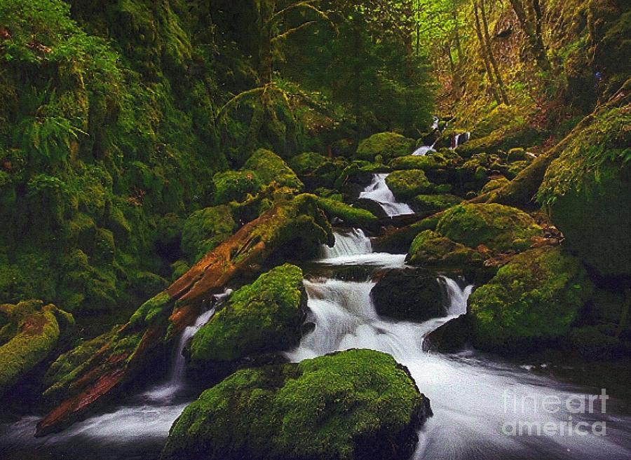Columbia Gorge Photograph - Green Canyon Cascades by Diane Kurtz