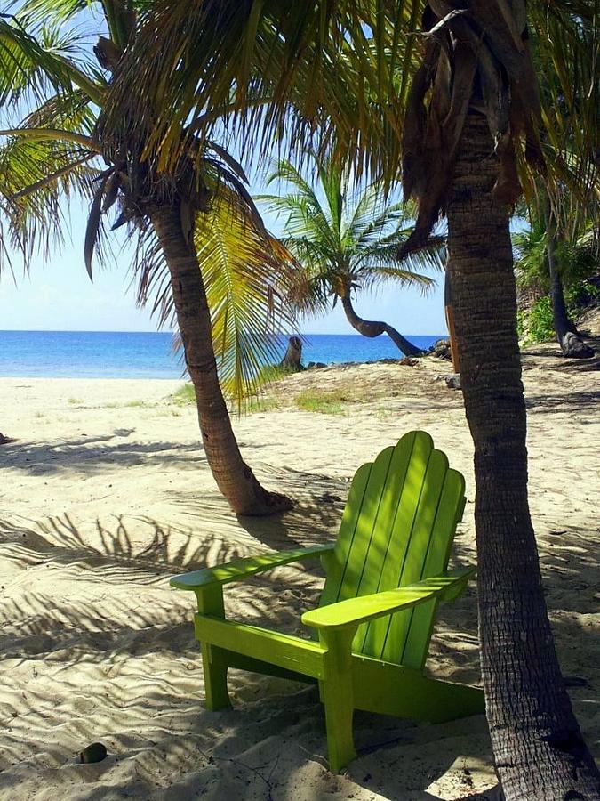 Beach Photograph - Green Chair On The Beach by Carla Parris