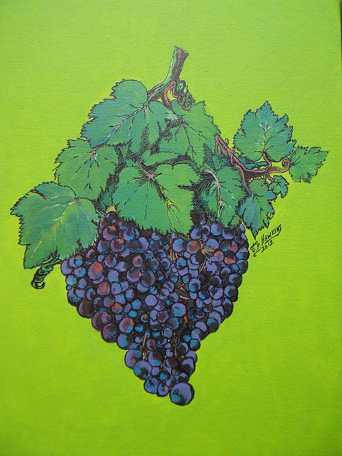 Grape Painting - Green Grapes by Timothy Hawkins